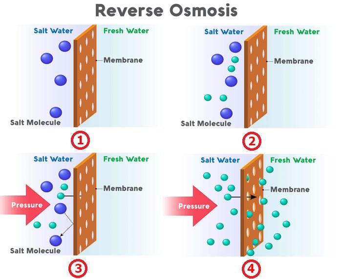 Máy lọc nước thẩm thấu ngược RO là gì và nó hoạt động như thế nào?