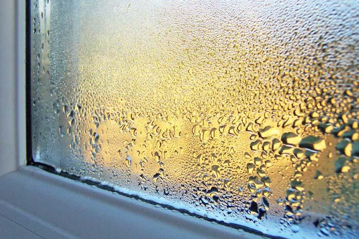 Độ ẩm không khí là gì? Tại sao độ ẩm không khí lại là vấn đề?