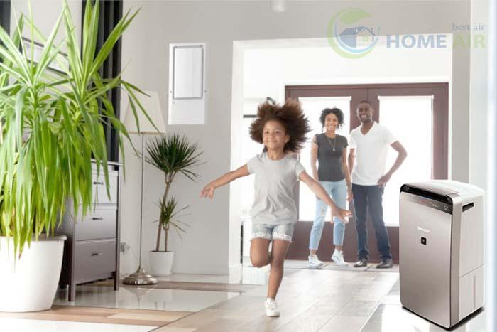 Máy hút ẩm dân dụng là gì? Lợi ích của máy hút ẩm gia đình